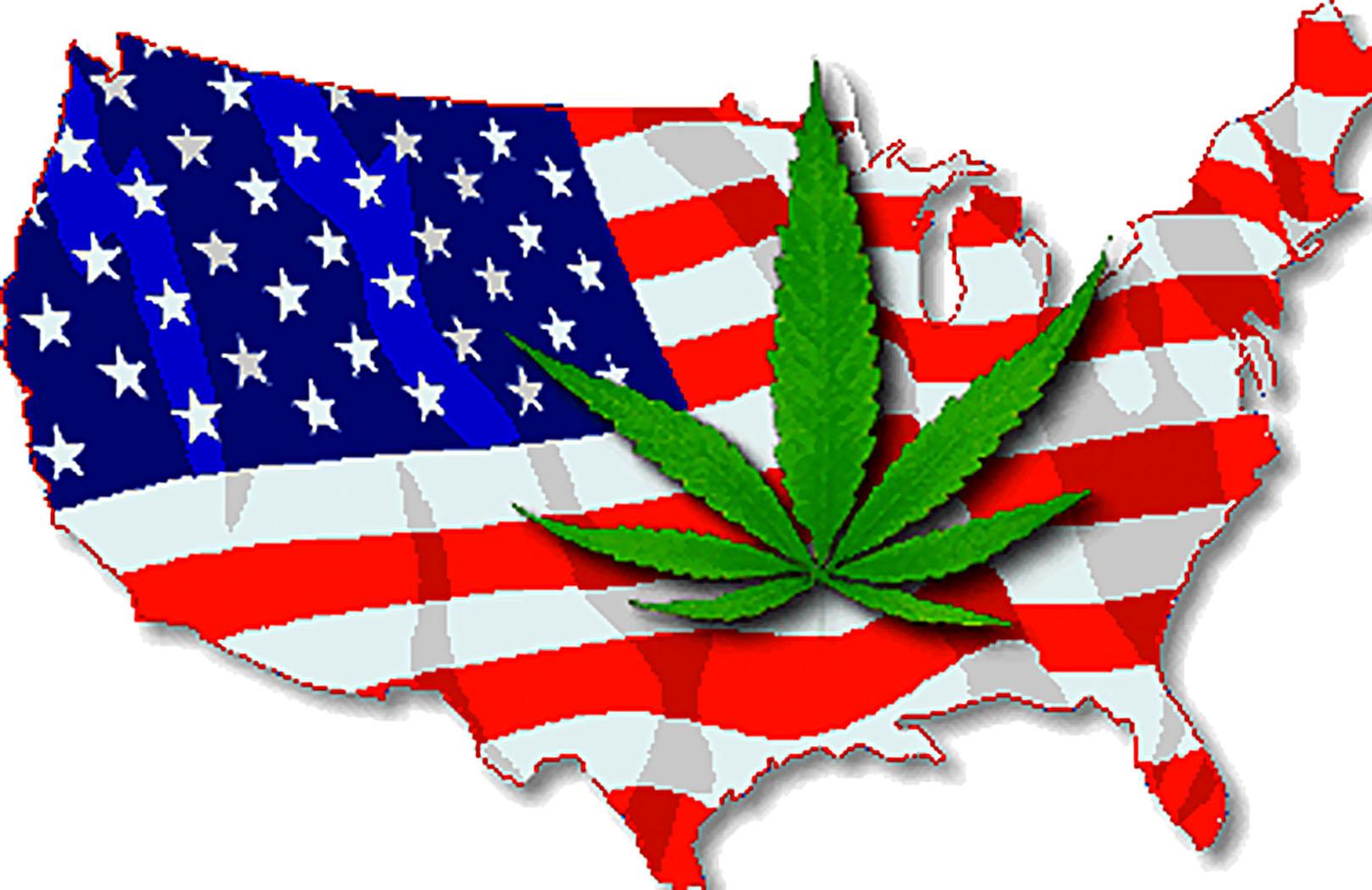Historia Marihuany w Ameryce, trawka24